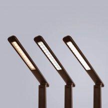Настольная лампа Arte Lamp Coach A1307LT-1BR
