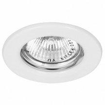 Накладной точечный светильник Feron DL10 15109