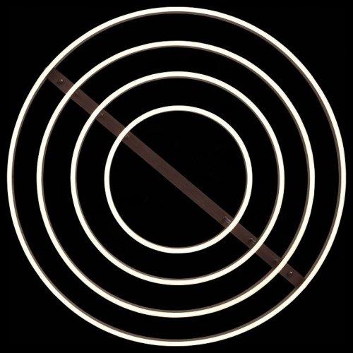 Потолочная светодиодная люстра ST Luce Onze SL944.402.04