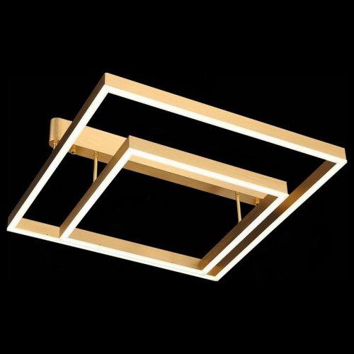 Потолочная светодиодная люстра ST Luce Piazza SL945.202.02